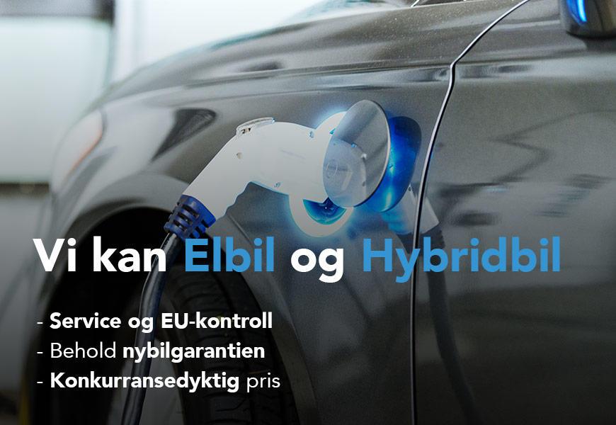 Vi kan elbil og hybridbil